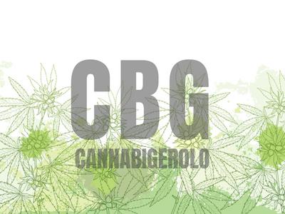 CBG – Il cannabigerolo