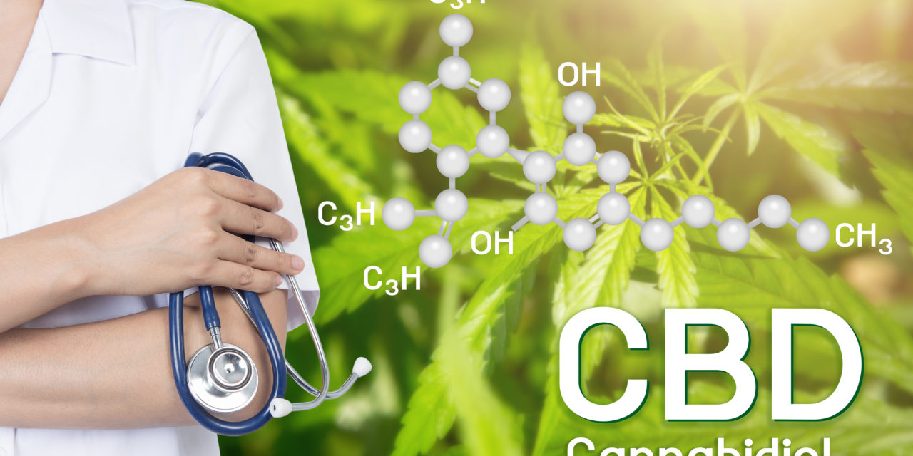 World Health Organization, CBD e THC
