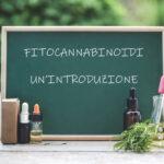 Fitocannabinoidi – un'introduzione