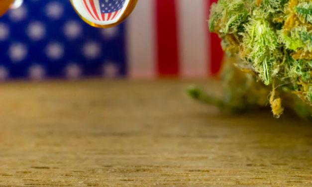 USA, governo federale, cannabis e ricerca