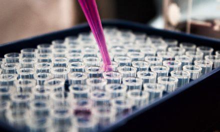 PCR – reazione a catena della polimerasi