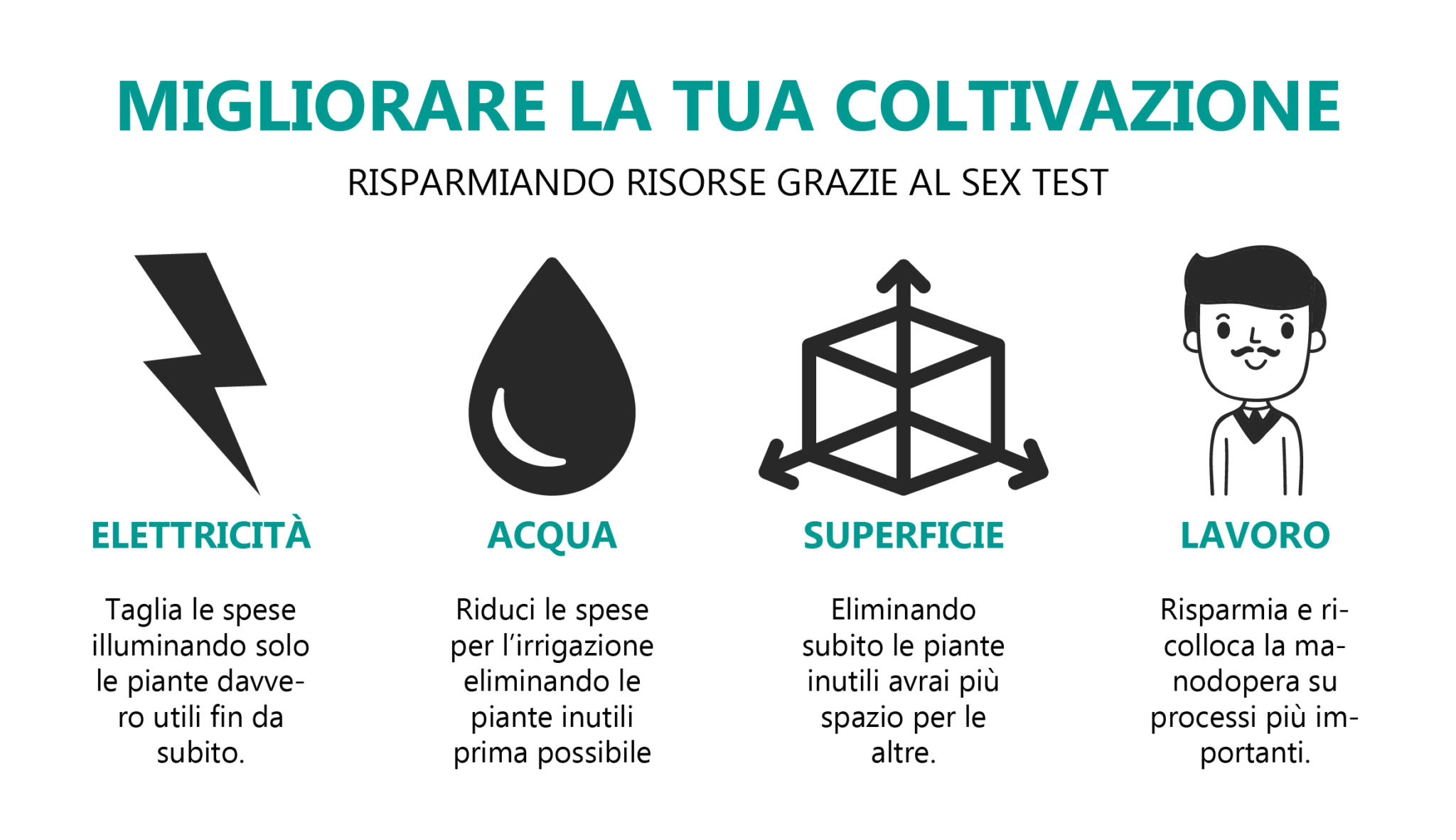 sex-test-efficienza-risorse-coltivazione