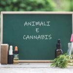 Animali e Cannabis
